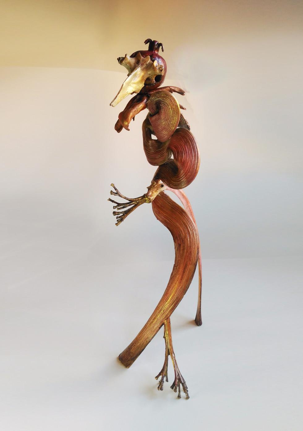 SILVANELE.granade bird