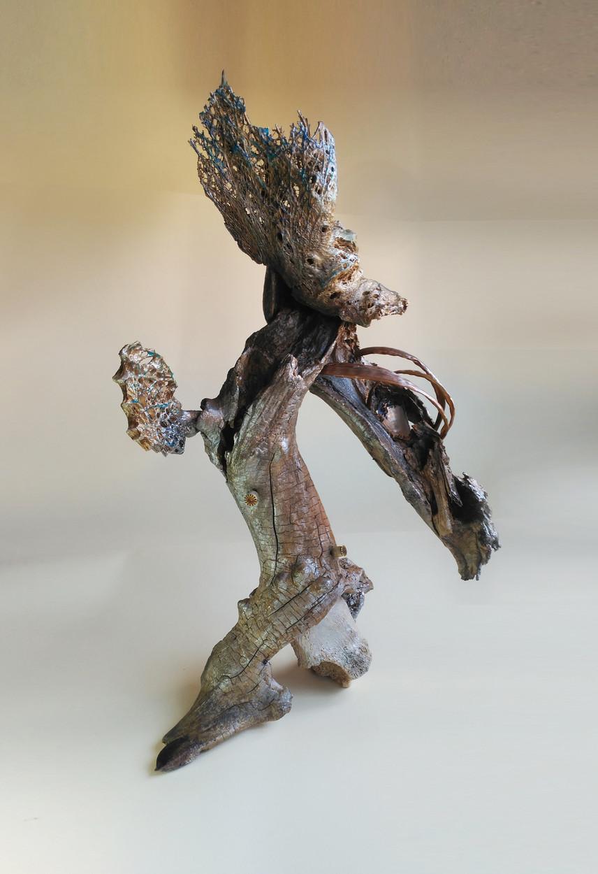 SILVANELE.silver bird