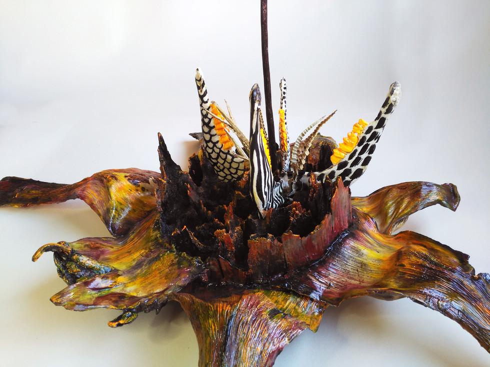 SILVANELE.agave spider