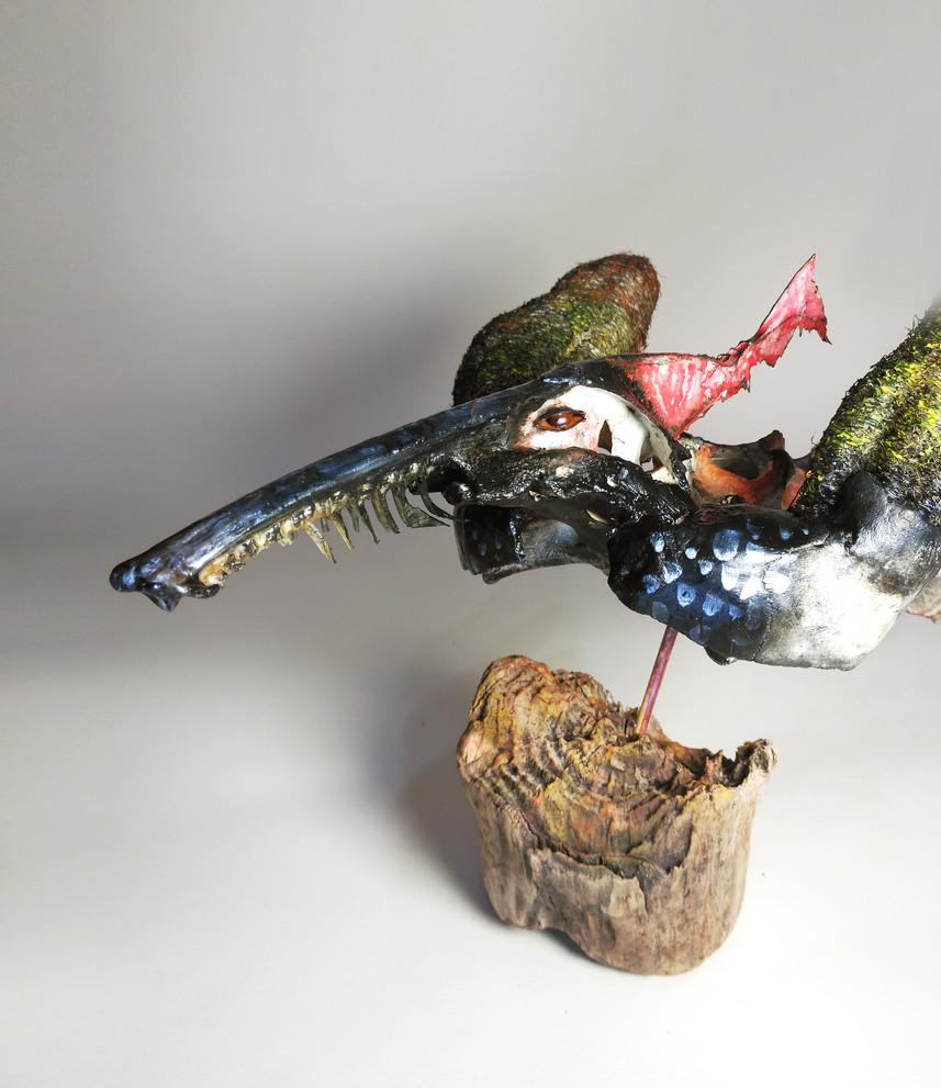 SILVANELE. sea bird