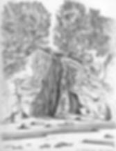 SketchJugHndlCrk2.png