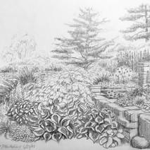 View at Cornell Botanical Gardens