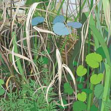 Roadside Grasses