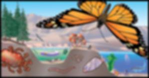 speciescape-monarch3_edited.jpg
