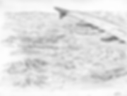 SketchFlight.1.png