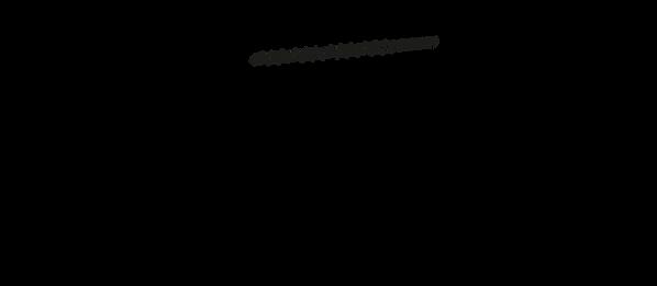 Dimensions de la trottinette électrique SPEEDTROTT RX2000