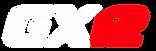 Logo trottinette électrique SPEEDTROTT GX12
