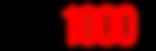 logo SPEEDTROTT RX1000