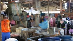 豆腐の製造過程を見学中