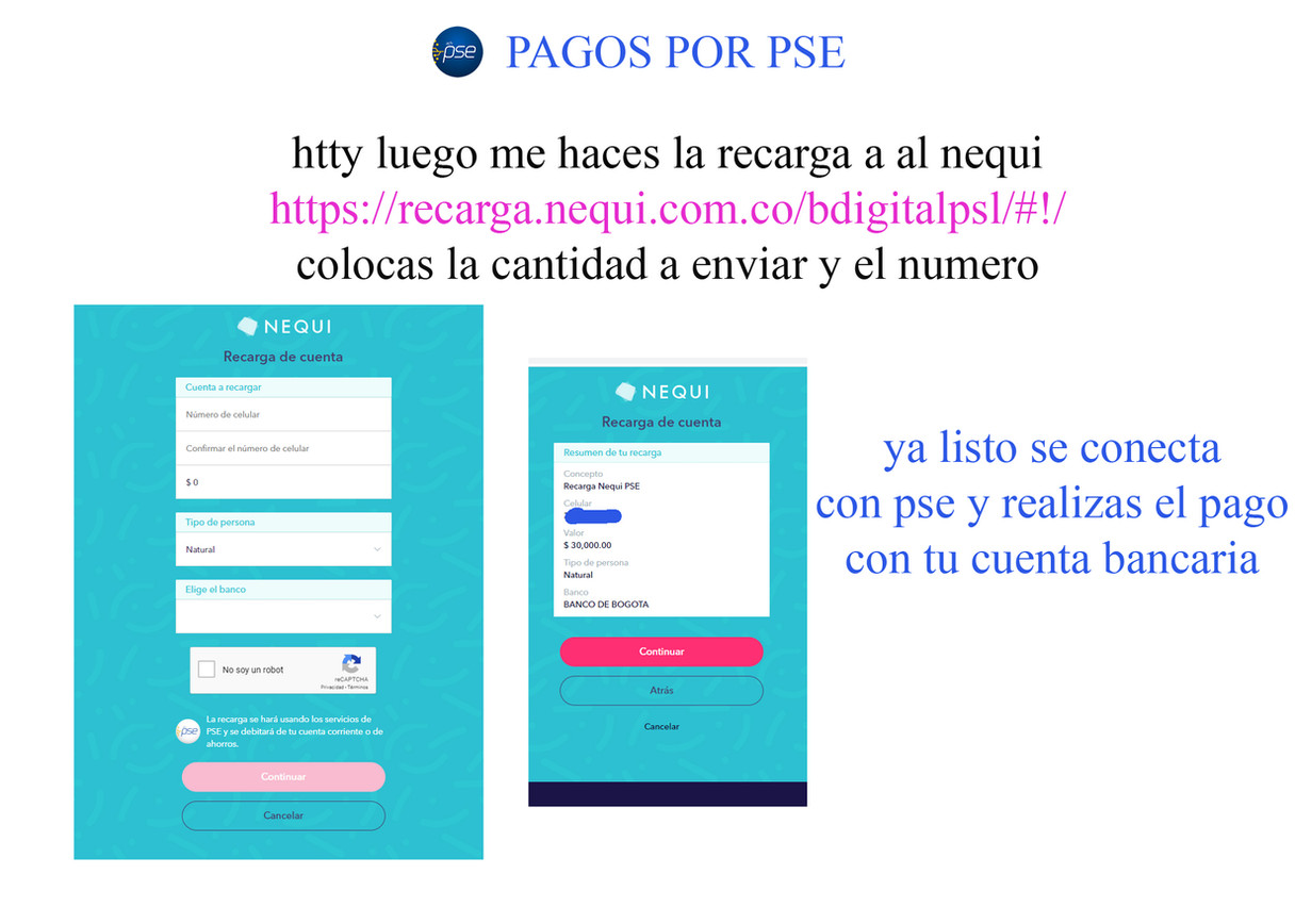 pago0_2[1].jpg