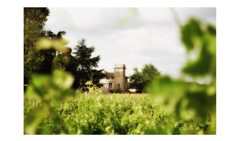 Château Tour Bicheau