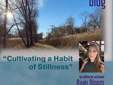 Cultivating a Habit of Stillness