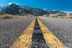 Road to Recovery-Reema Hammad
