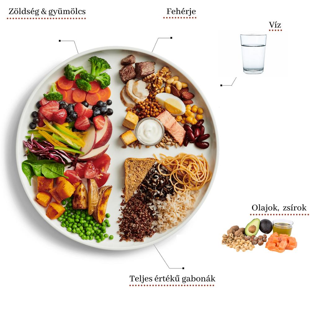 Milyen arányban legyenek a tápanyagok a tányérunkon