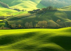 Arazi Arsa Yatırımının 5 Avantajı