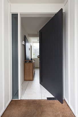 Pivot door photo.jpg