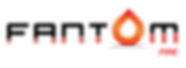 FANTOM_FIRE_TRANSPARENT_LOGO_2020.png