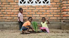 Kupanda Lemon Grass.jpg