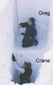 1_CraneGreg3.jpg