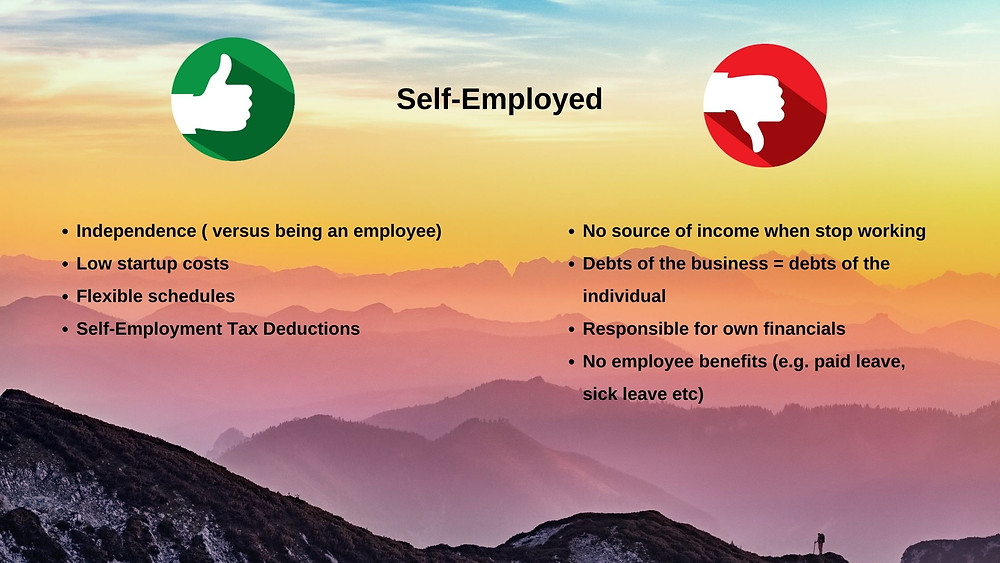 Self-Employed Pros & Cons