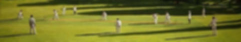 david-inshaw-the-cricket-game-iii-2004.j