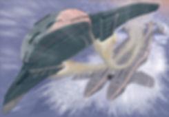 Trans take-off.jpg