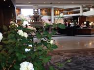 roses-indoors.jpg