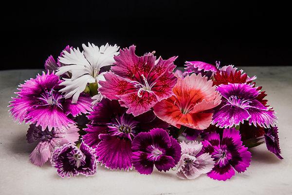 Wagoga Edible Flowers