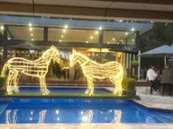 LED Horses.jpg