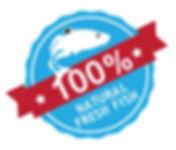 100-tis100.jpg