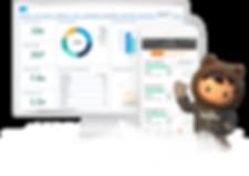 Salesforce world's #1 CRM