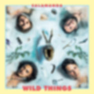 SALAMANDA_WILDTHINGS_COVER_iTunes72.jpg