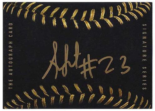 Black Baseball - Sixto Sanchez