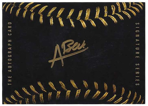 Black Baseball - Austin Beck