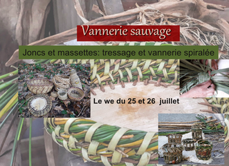 Le we du 25 et 26 juillet : Massettes et joncs plantes d'eau à entrelacer.