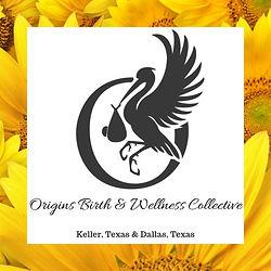 Origins Birth & Wellness Collective