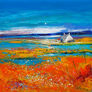 """Machair Wild Cotton and Wild Flowers, South Uist"" by John Lowrie Morrison"