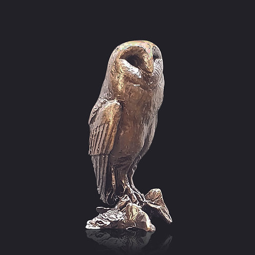 Barn Owl by Butler and Peach