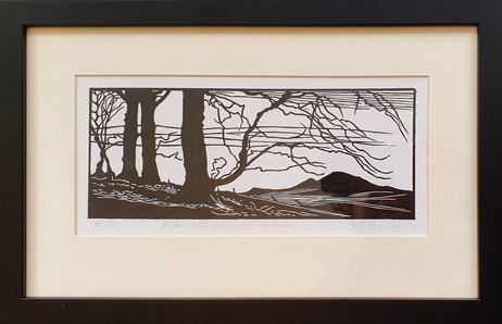 Eildon Hills and Winter Woodland