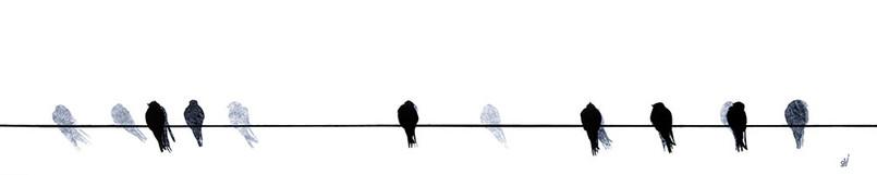 """Swallows Waiting to Go"" by Sandra Vick"