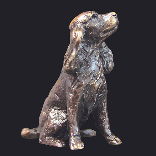 Spaniel by Butler and Peach