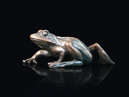 Small Frog Walking by Keith Sherwin