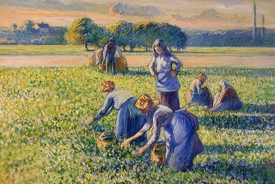 Collector appeals for return of Pissarro painting restituted through a 1945 order made by the Allies