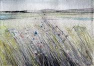 Distant Lands - Julie Morris - The Gallery Melrose.JPG