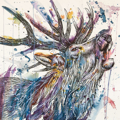 """Call of the Wild"" by Tori Ratcliffe"