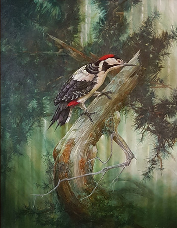 Woodpecker - Chris Sharp - The Gallery M