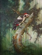 Woodpecker - Chris Sharp - The Gallery M