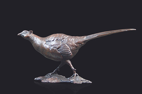 Pheasant by Michael Simpson
