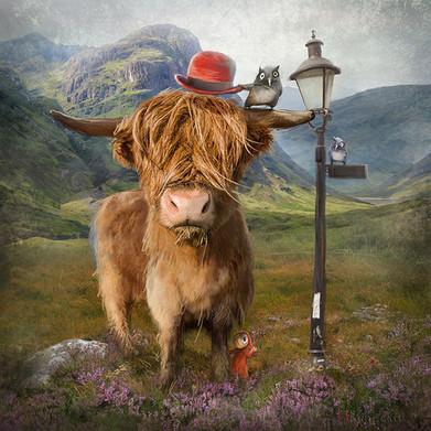 """""""Highland Cow"""" by Matylda Konecka"""