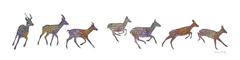 """""""Running Deer"""" by Diane Young"""